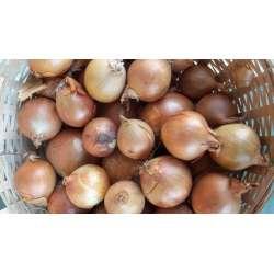 oignons  jaune 250 grammes