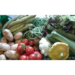 Panier de Légumes Bio pour...