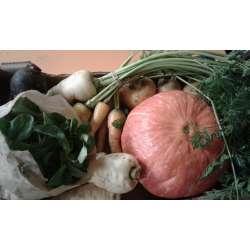 Panier hivers de légumes...